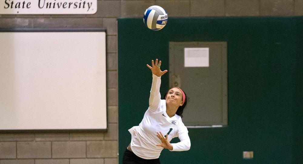 Volleyball Set For Panther Challenge To Close Out Non-League Play