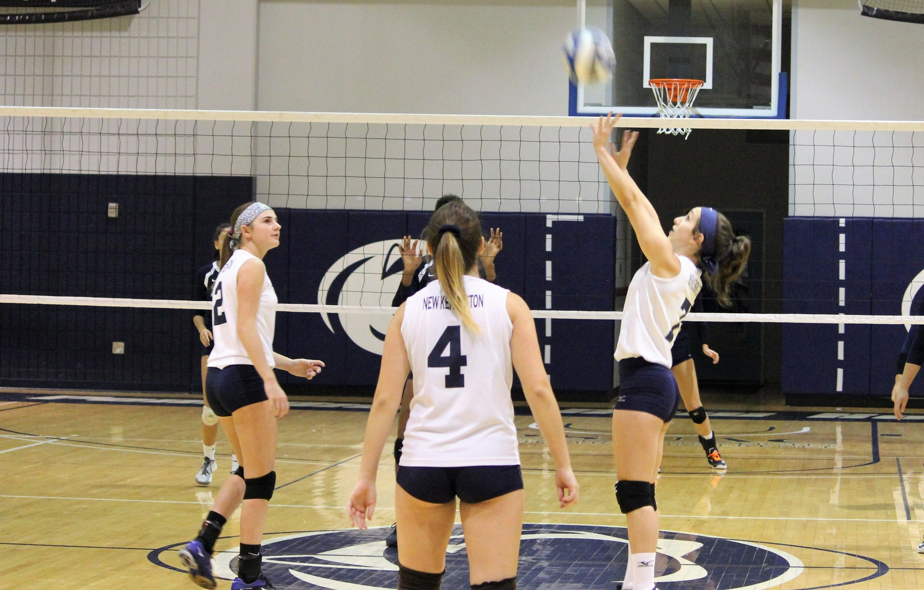 Women's Volleyball Drops PSUAC Match to Penn State Beaver