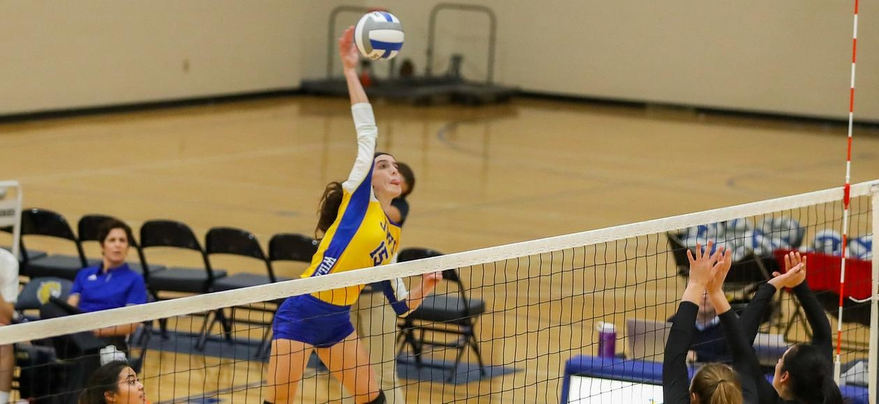 No. 10 Women's Volleyball Beats Lasell 3-0 to Advance to GNAC Finals