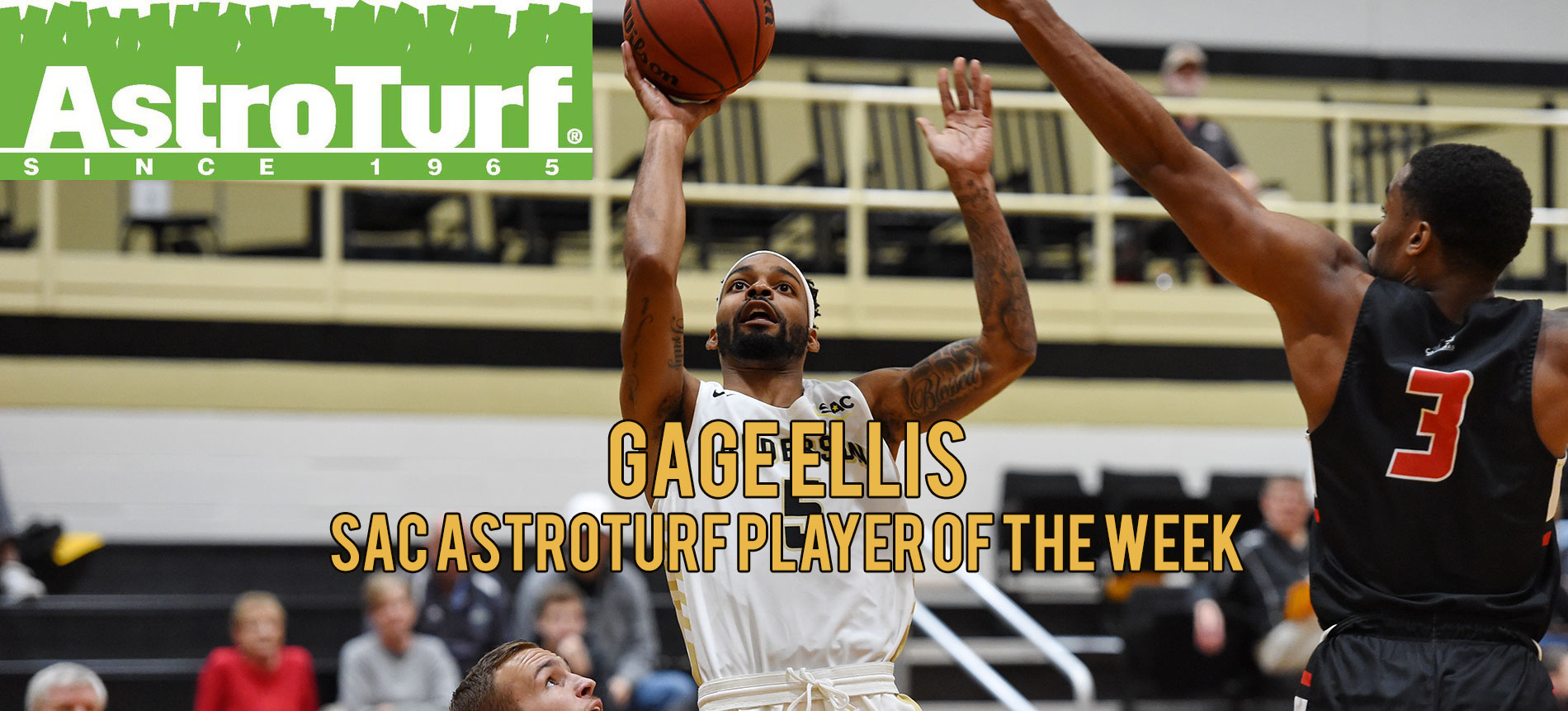 Ellis Named AstroTurf South Atlantic Conference Men's Basketball Player of the Week