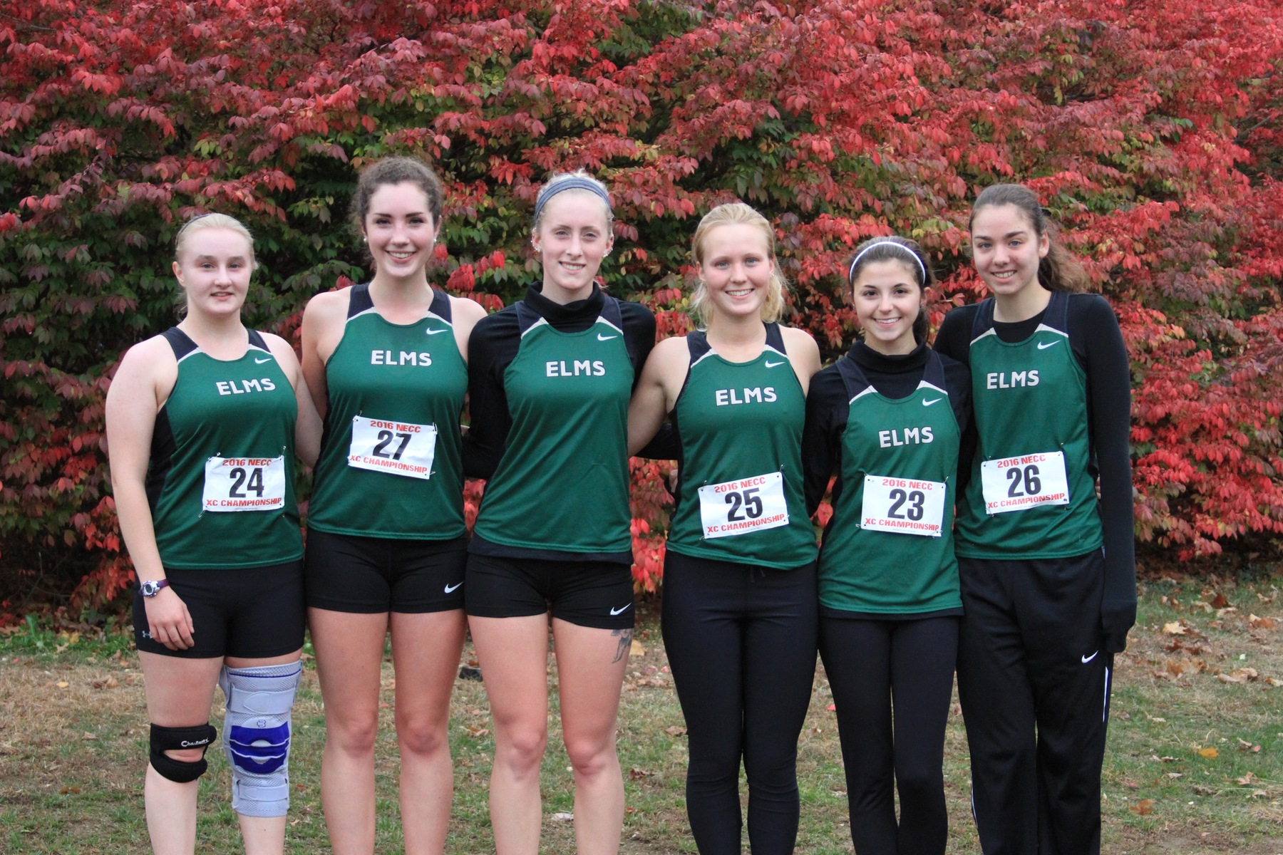 Women's Cross Country Receives USTFCCCA Scholar Team Status