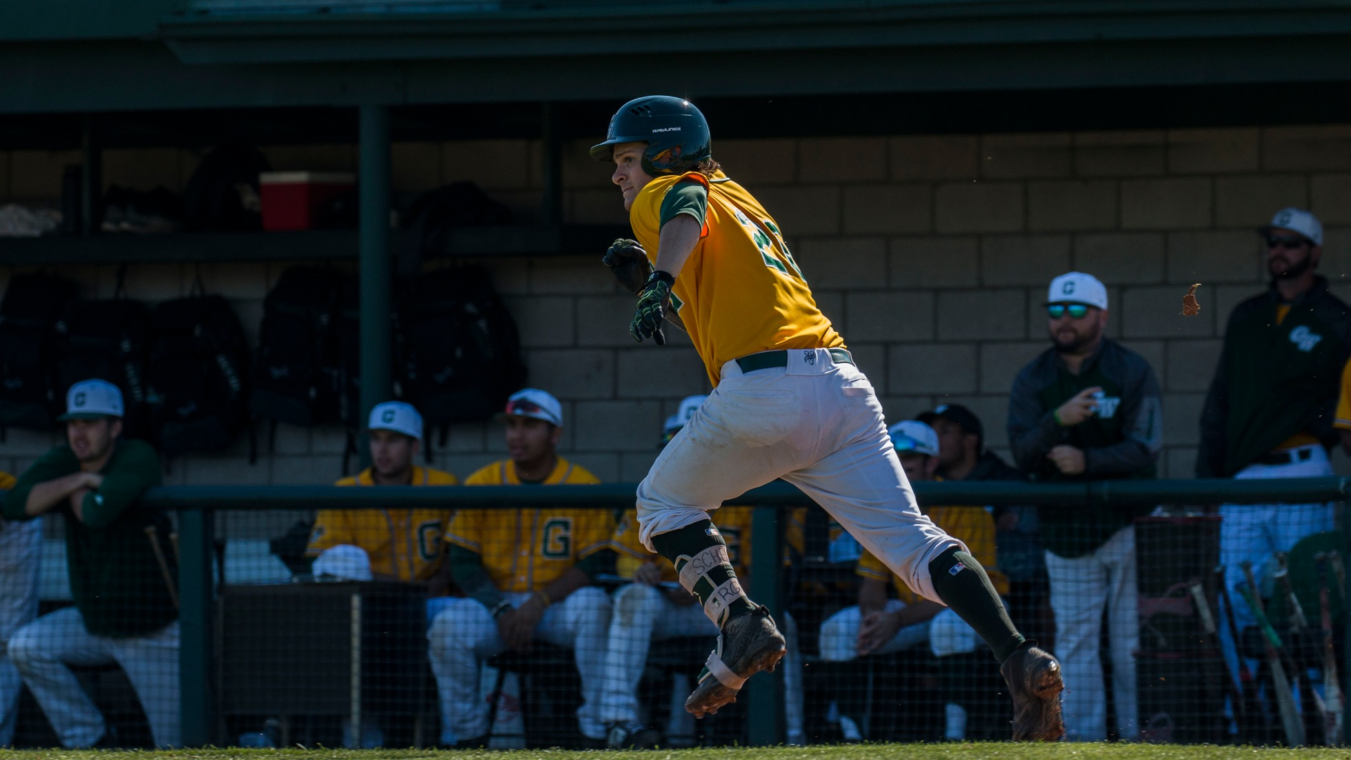 Baseball: Bushell's Spark Not Enough as Rustlers Fall