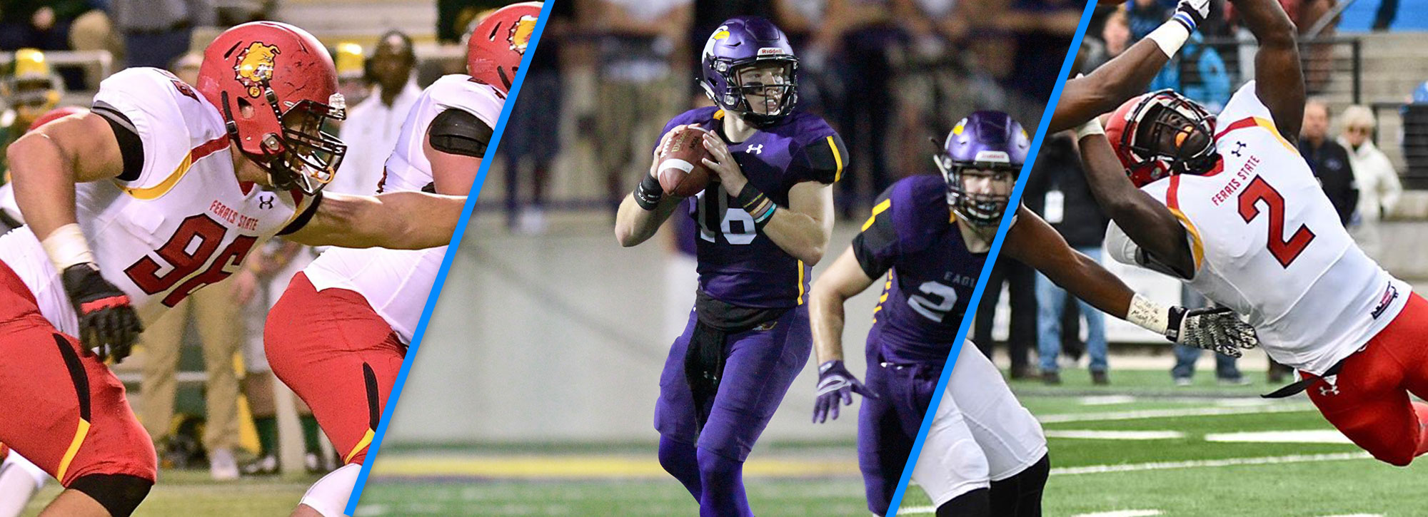 Three Standouts Selected to 2017 AFCA All-America Teams