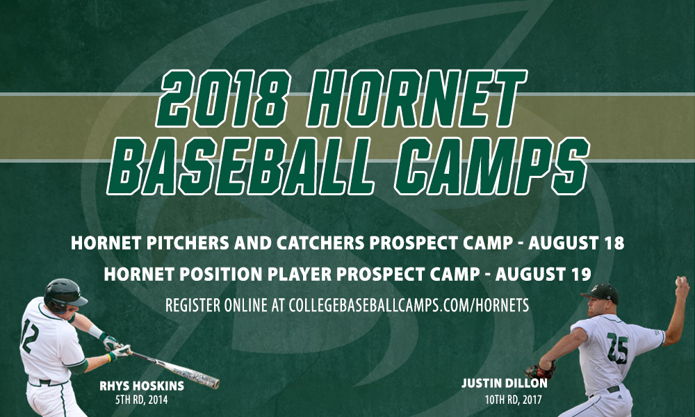 REGISTER NOW FOR 2018 SUMMER HORNET BASEBALL CAMPS