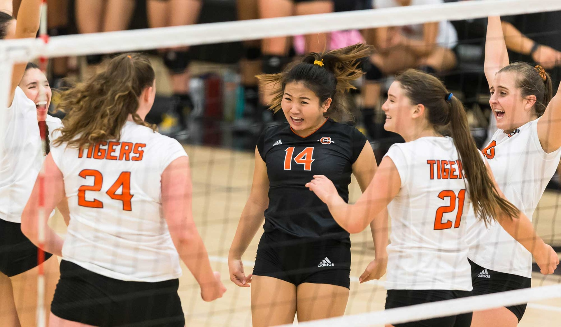 Nevins, Degnan Lead Tigers Over Beavers