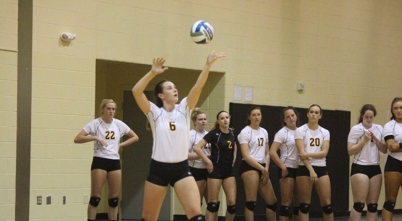 Volleyball Drops Pair To Start Season