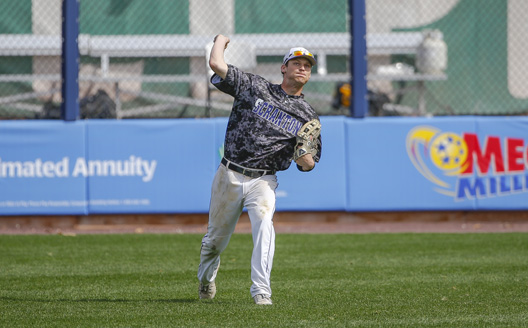 Senior outfielder Brian Healy homered in the opening game on Saturday against Dickinson.