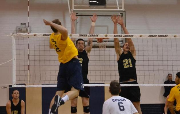 Cobras Fall to Falcons, 3-0