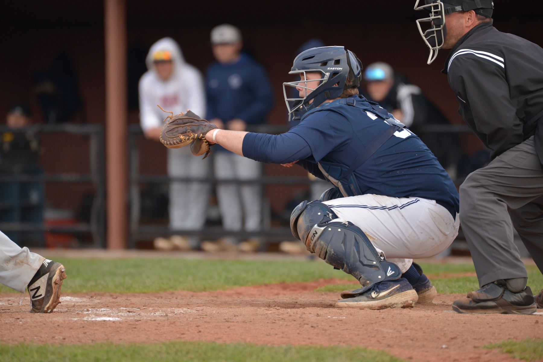 Behrend Baseball Splits With Penn State Altoona