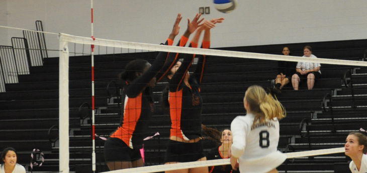 Consistent Effort Give Leopards Three-Set Win