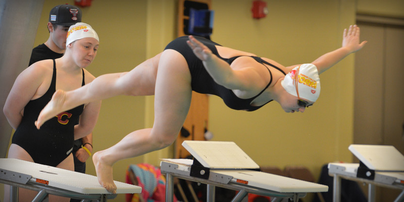 Swimming and diving teams collect academic award