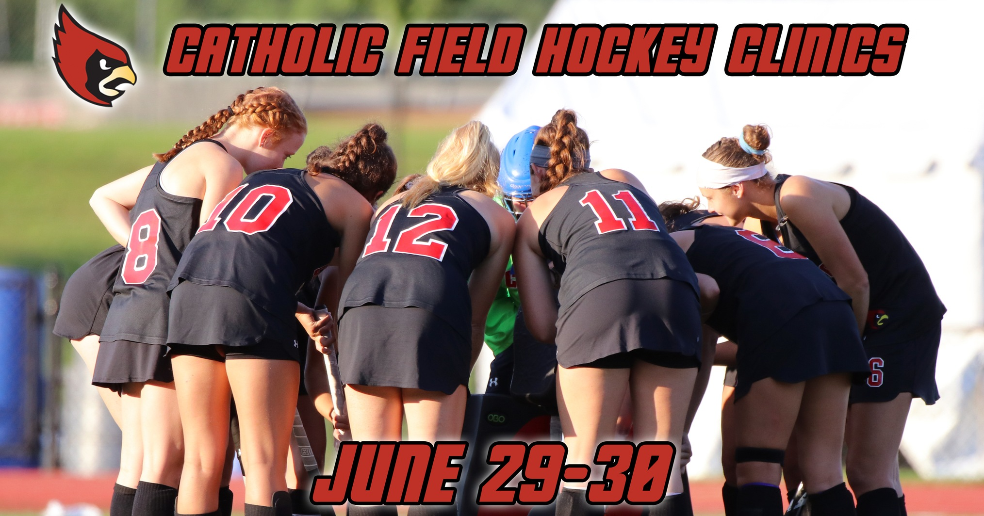 Cardinals to Host Two Clinics on June 29 and June 30