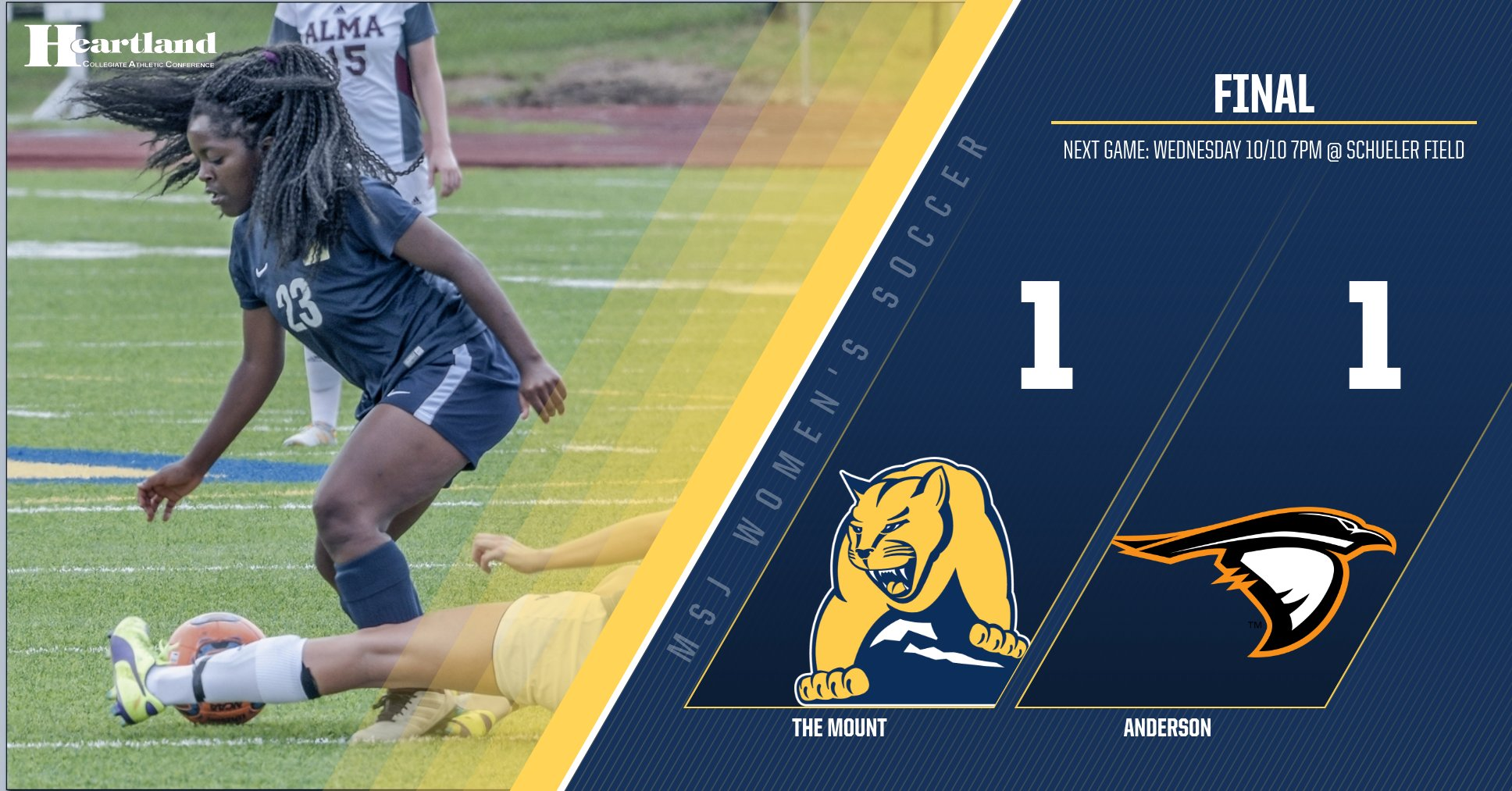 Lions end in tie against Anderson University