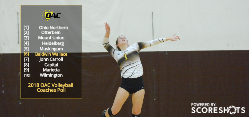 Volleyball Selected Sixth in OAC Coaches Poll