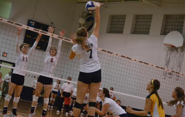 Coker Twelfth in Volleyball Preseason Poll