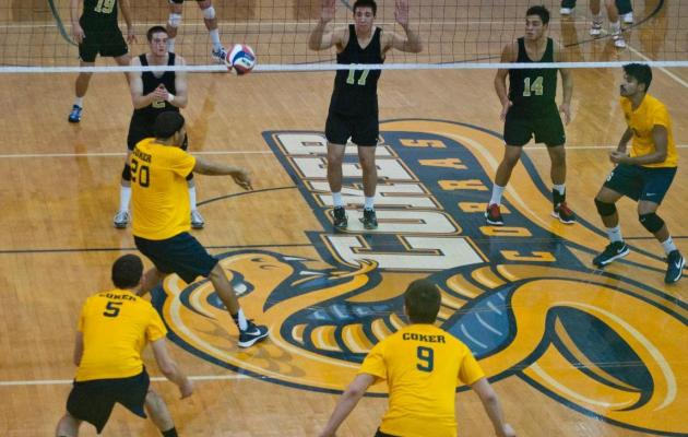 Cobras Fall to Fleet, 3-0