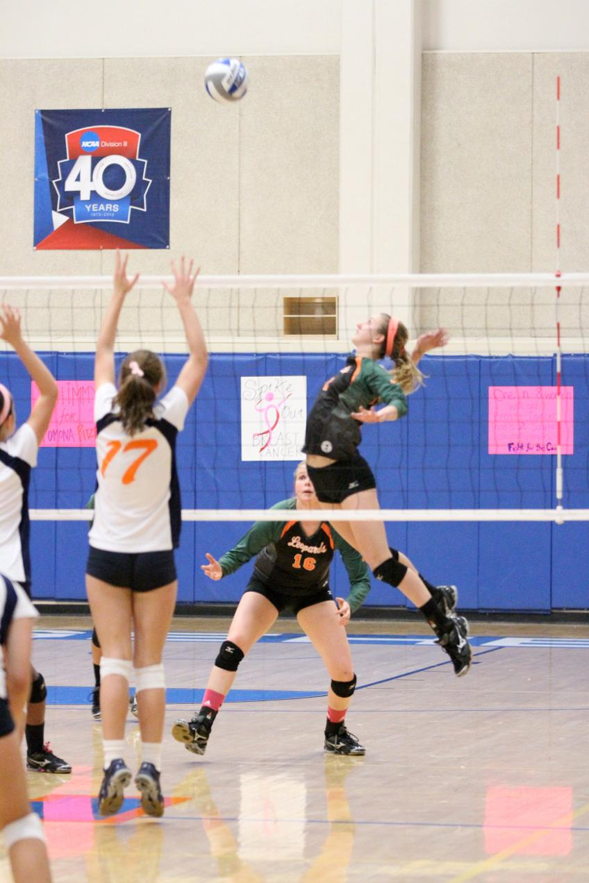 Leopard volleyball team stumbles on the road