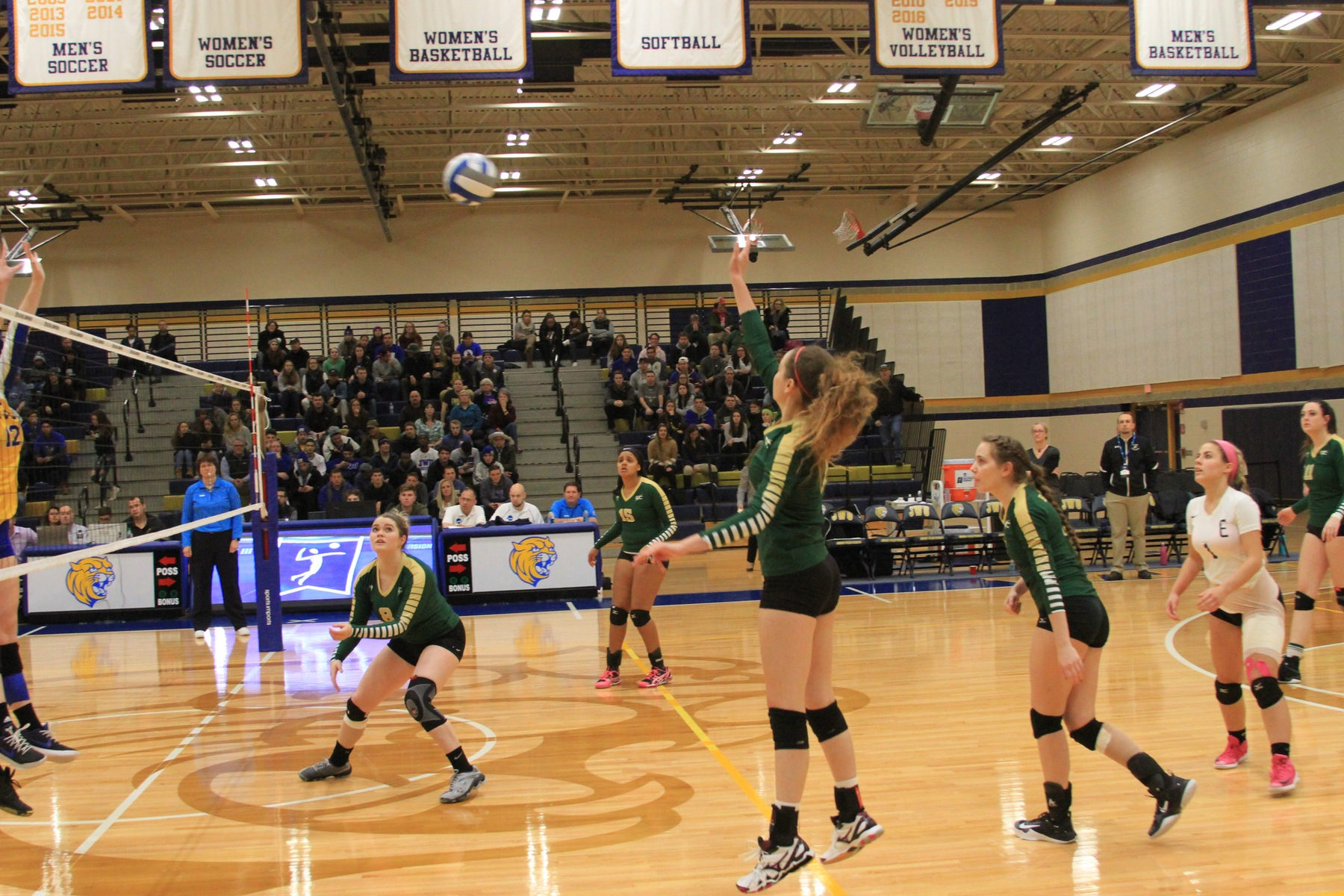Women's Volleyball Falls To Johnson & Wales In NCAA Opening Round
