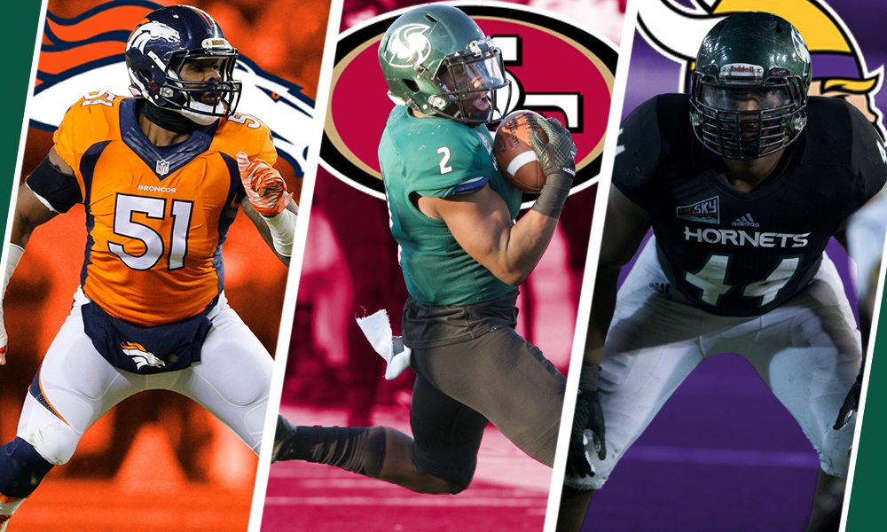 NFL CAMPS OPEN WITH THREE HORNETS IN ATTENDANCE