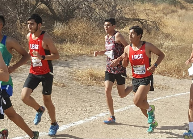 Cross Country Qualifies for CCCAA State Championships