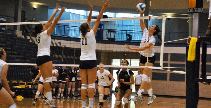 Volleyball Gives D-II St. Edward's Run for their Moneay