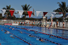 Check out Pictures from Swimming and Diving's Holiday Training Trip in Florida at the UMBC Dawg Blog