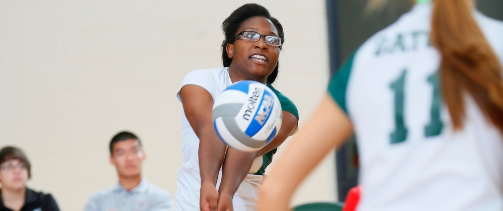 Gators Drop a Pair of Matches to Open 2014