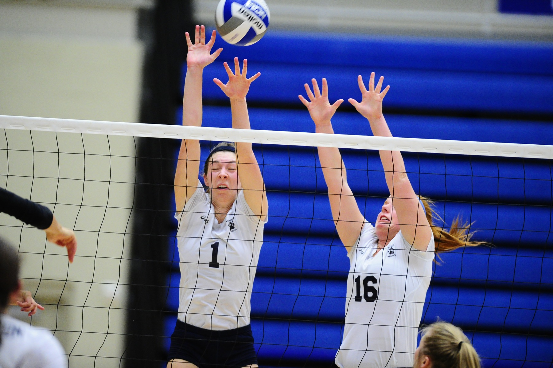 Grove City Takes Lions in Five Sets