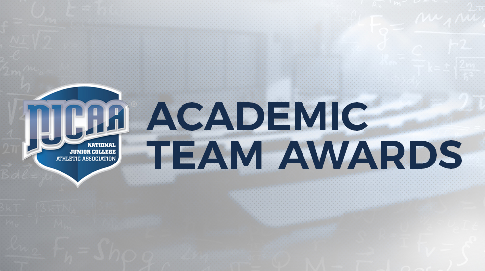 Academic Teams of the Year revealed for 2016-17
