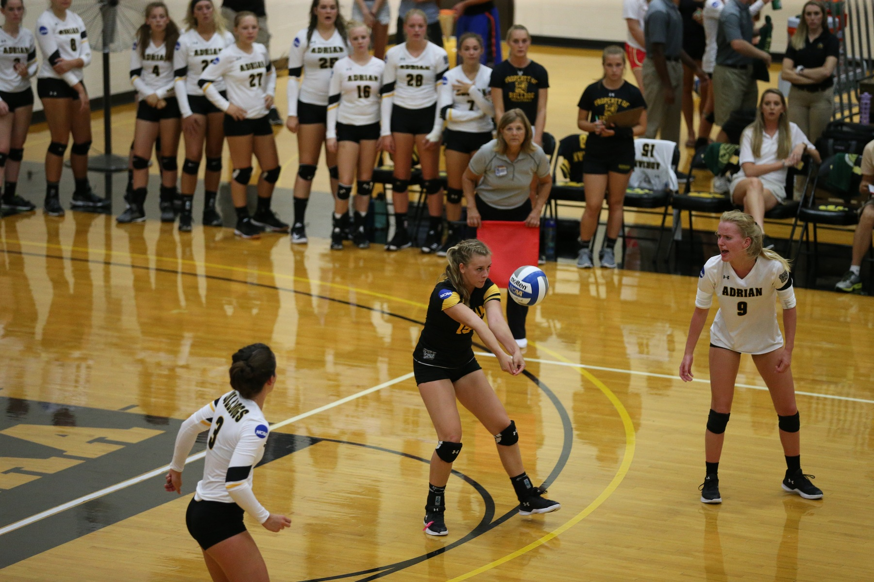 Bulldogs Fall to Terriers in Straight Sets