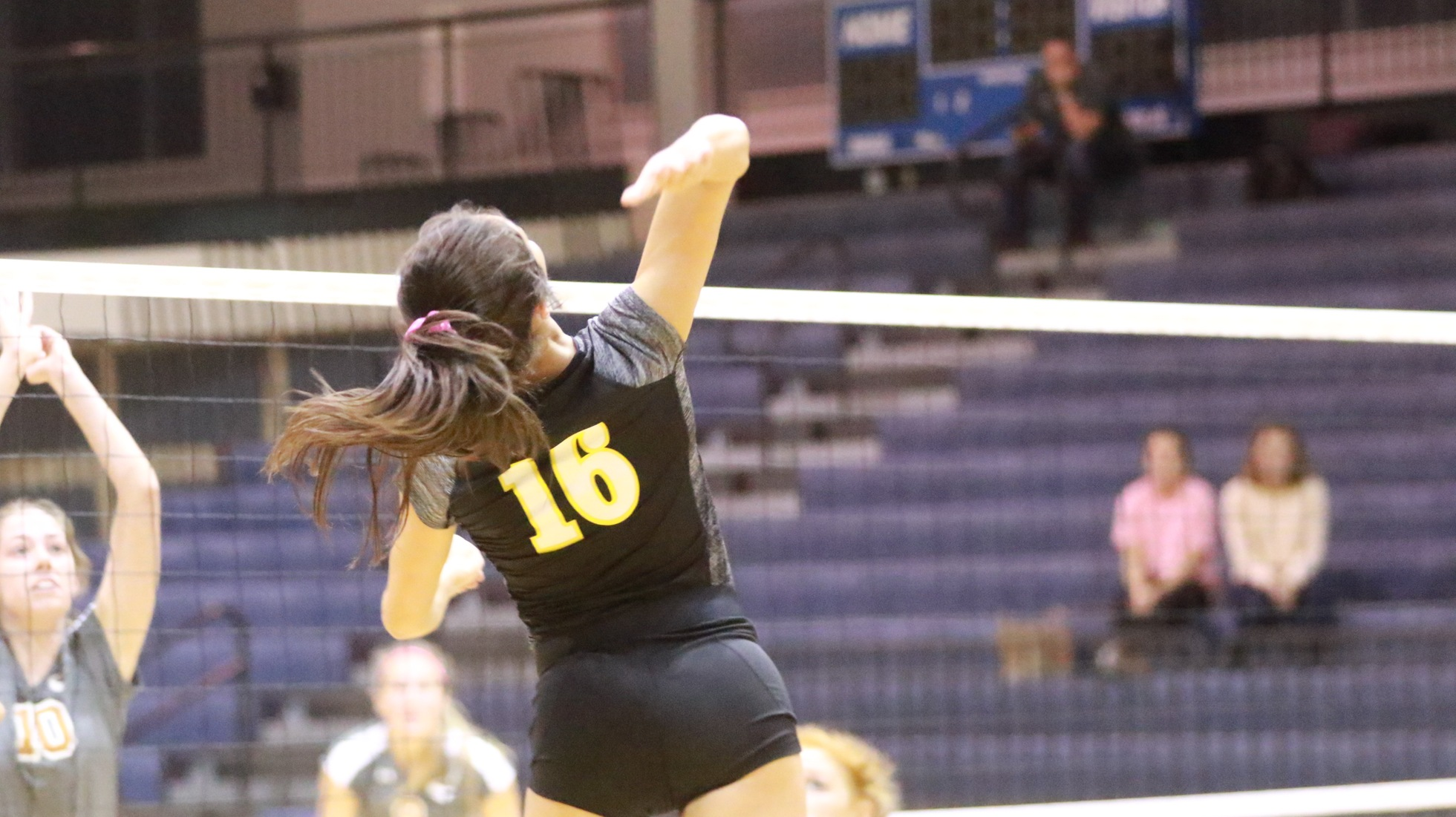 Volleyball Sweeps Weekend Matches With Win Over Austin College