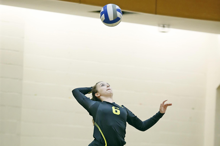 Women's Volleyball Sweeps UMass Dartmouth