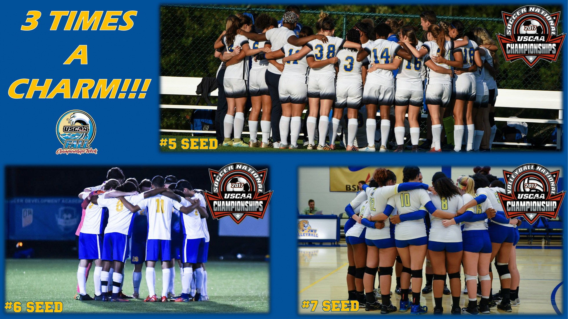 JWU Volleyball, Men's and Women's Soccer Earn Bids to USCAA Nationals