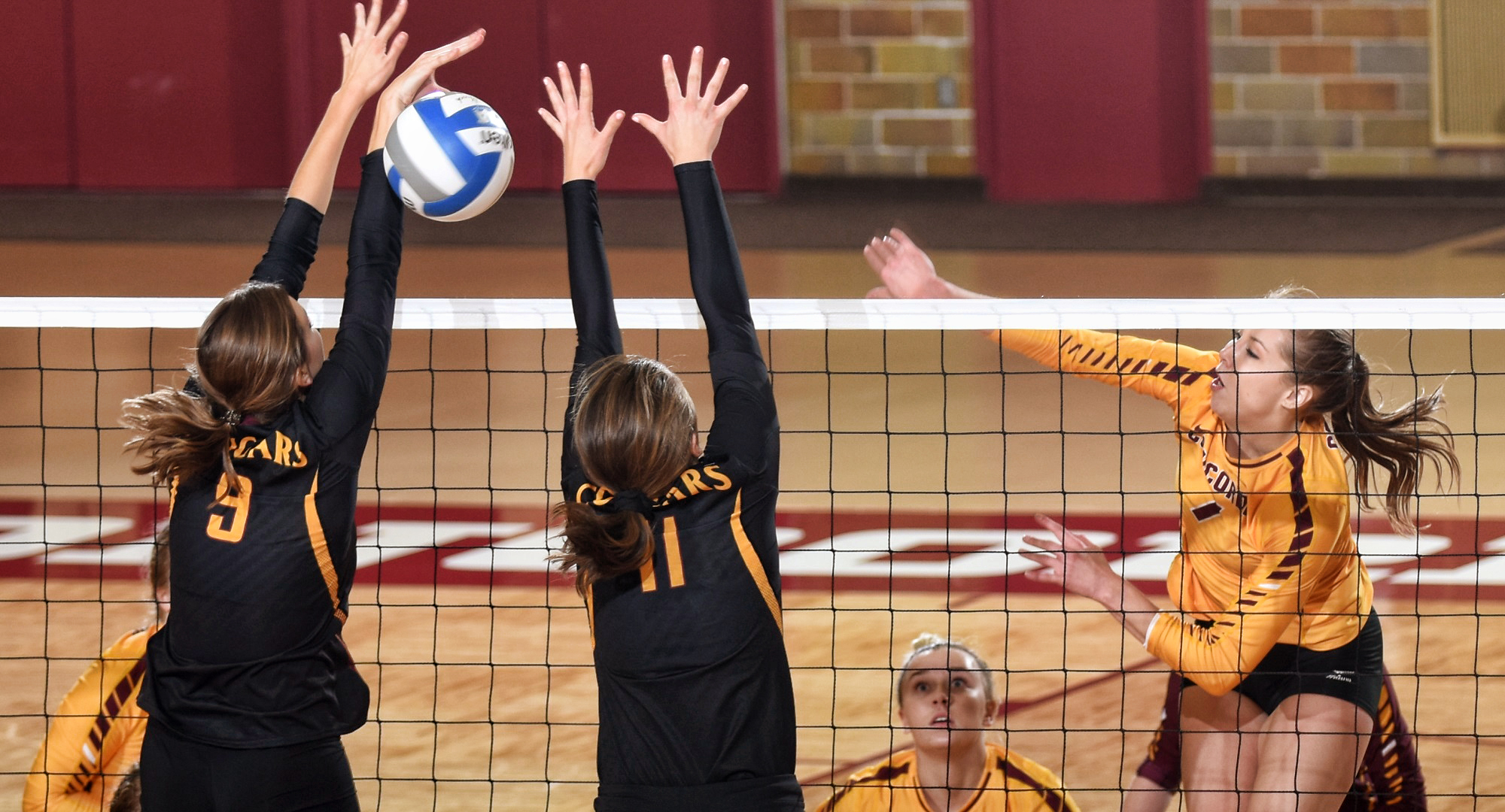 Senior Haley Cuppett hits the ball through the block for one of her match-high 16 kills during the Cobbers' match with Minn.-Morris.
