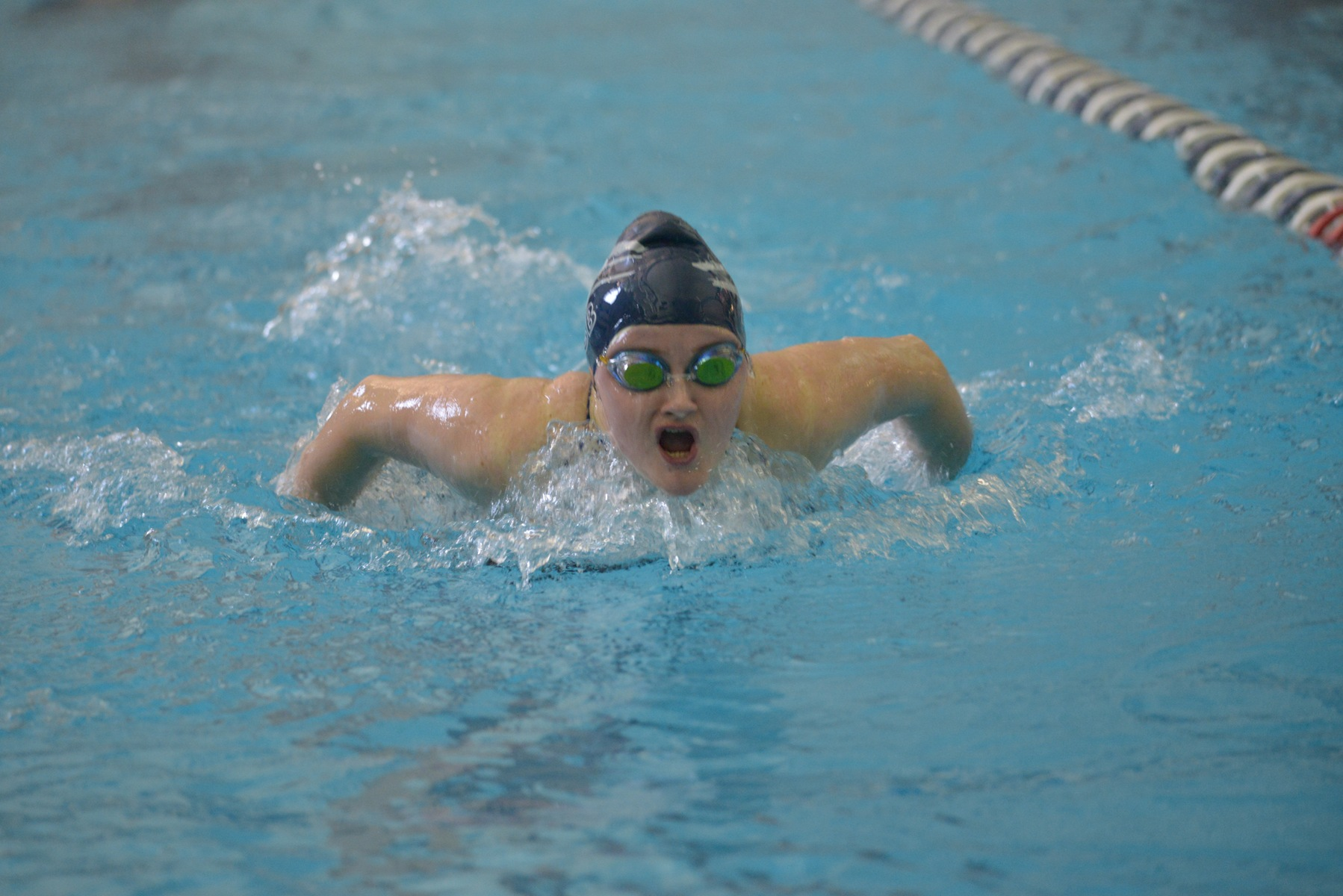 Westminster Too Much For Women's Swimming and Diving