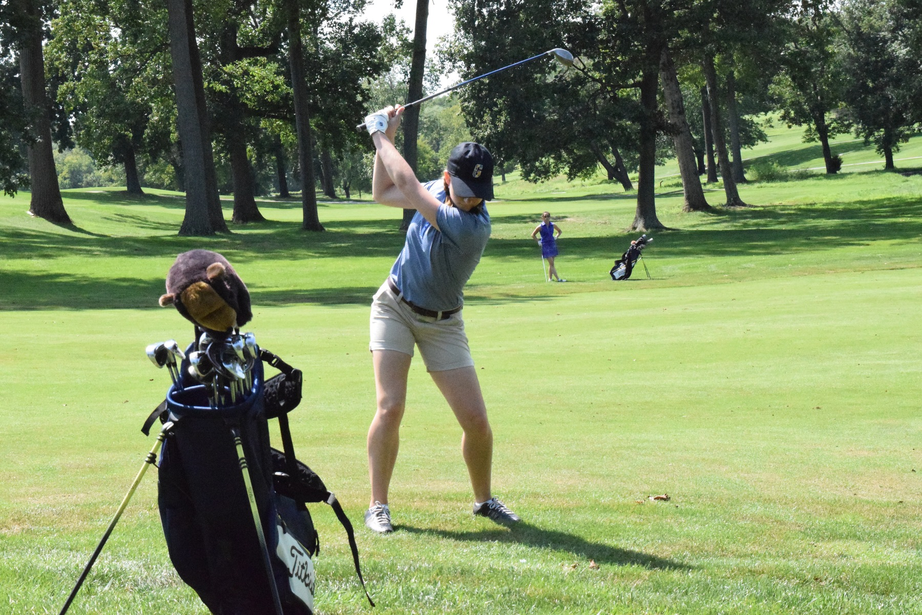 Gophers Place 3rd at Springbrook Invitational