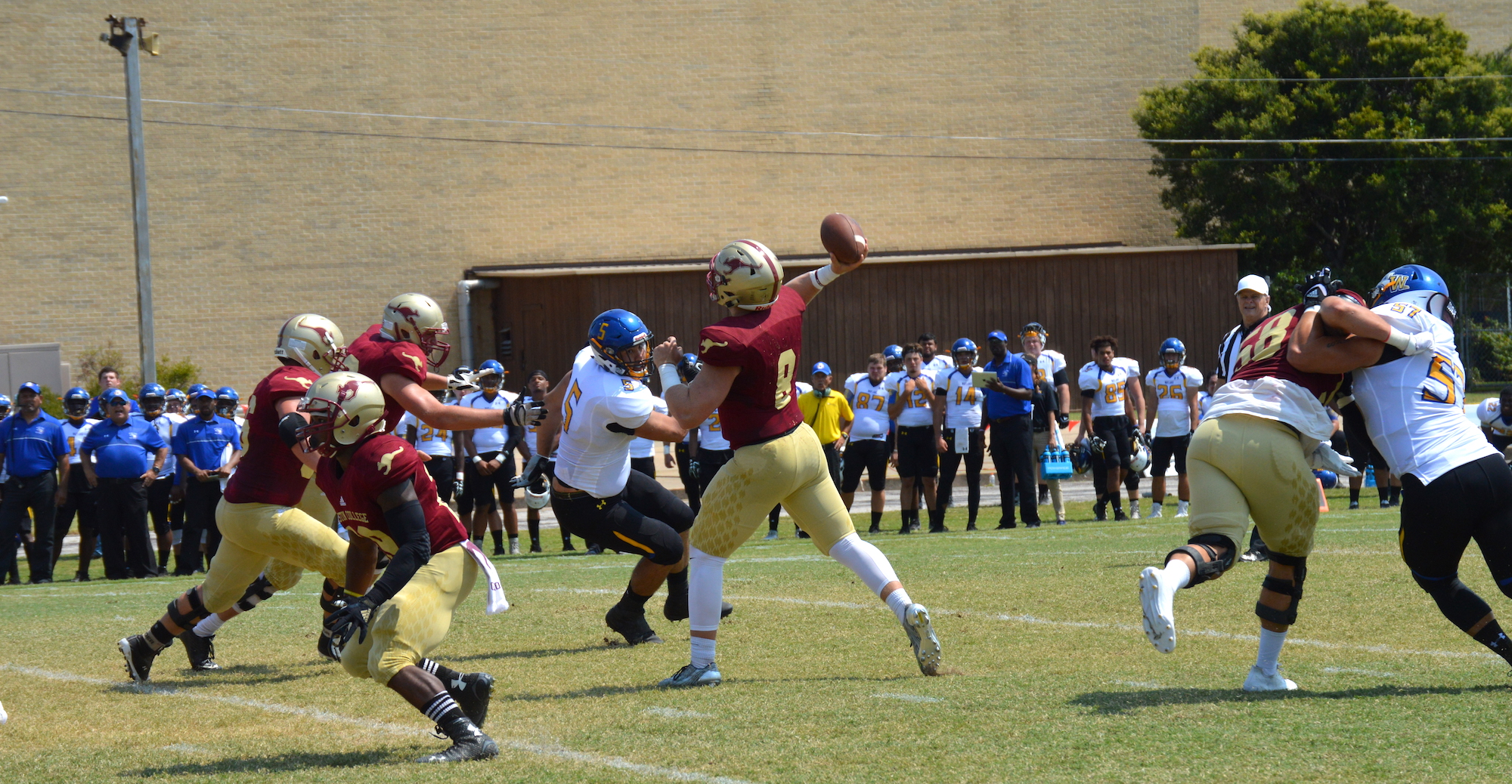 'Roos Dominate Early in Win Over Wayland Baptist