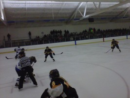Gustavus skaters shut out Falcon women 5-0