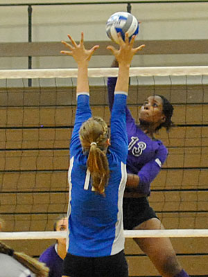 Lady Wildcats Extend Win Streak to Seven