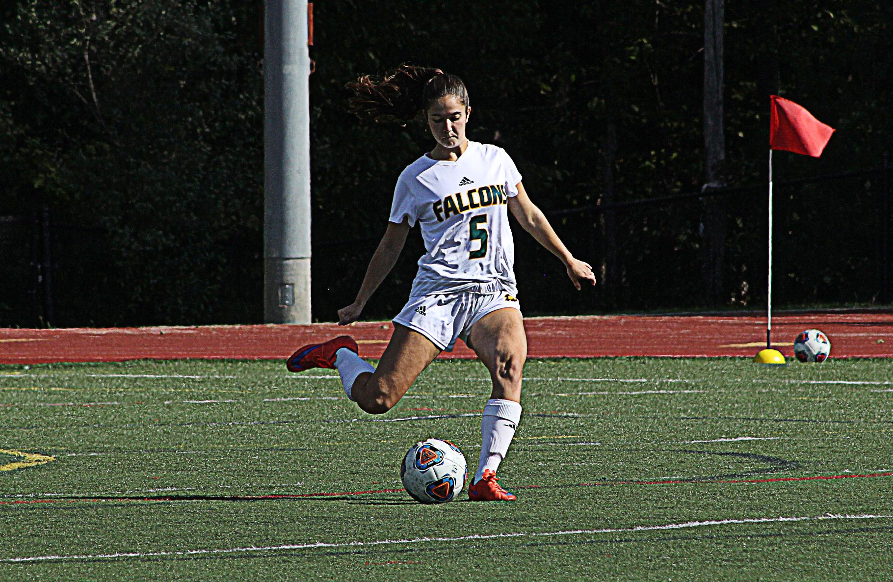 Fitchburg State Nipped By Framingham State, 3-2