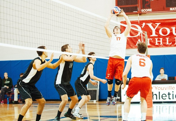 Season Preview: D'Youville Men's Volleyball