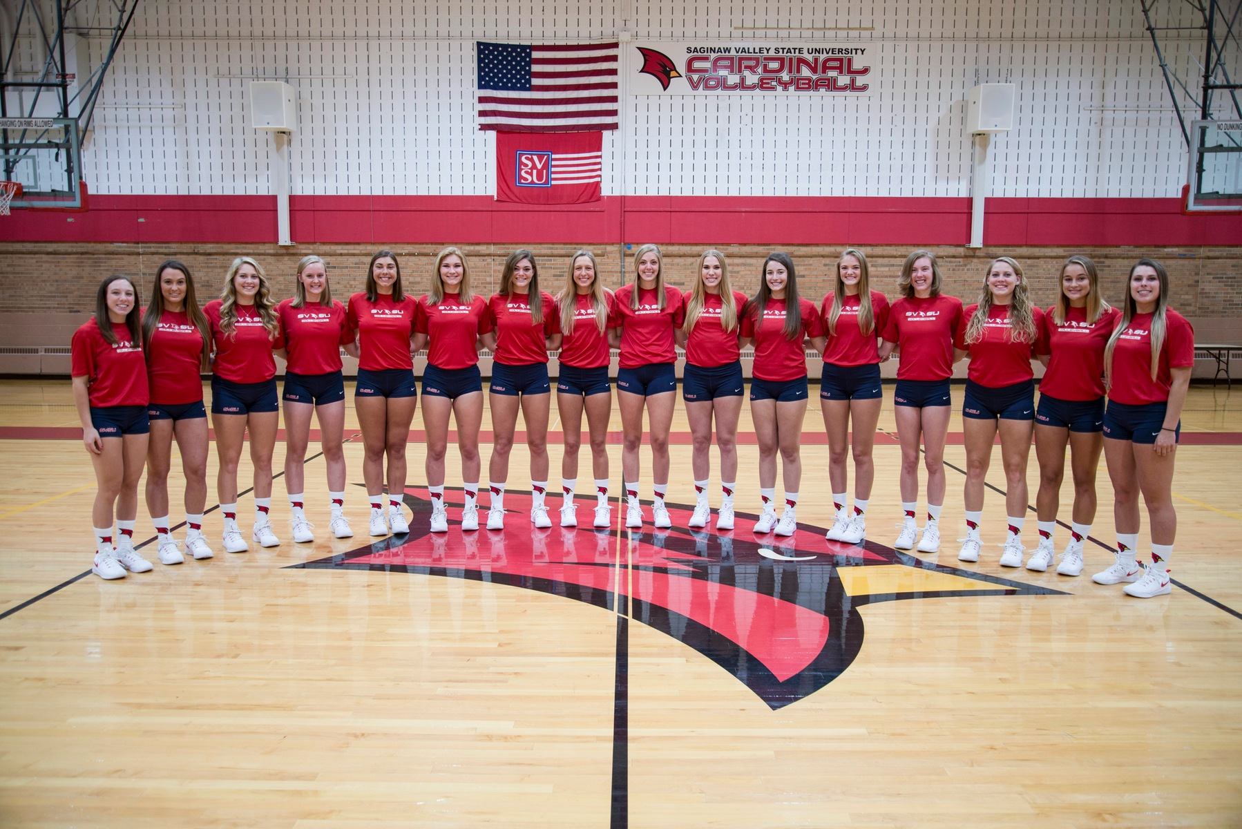 SVSU Volleyball Set To Host Wayne State On Wednesday In GLIAC Quarterfinal Action
