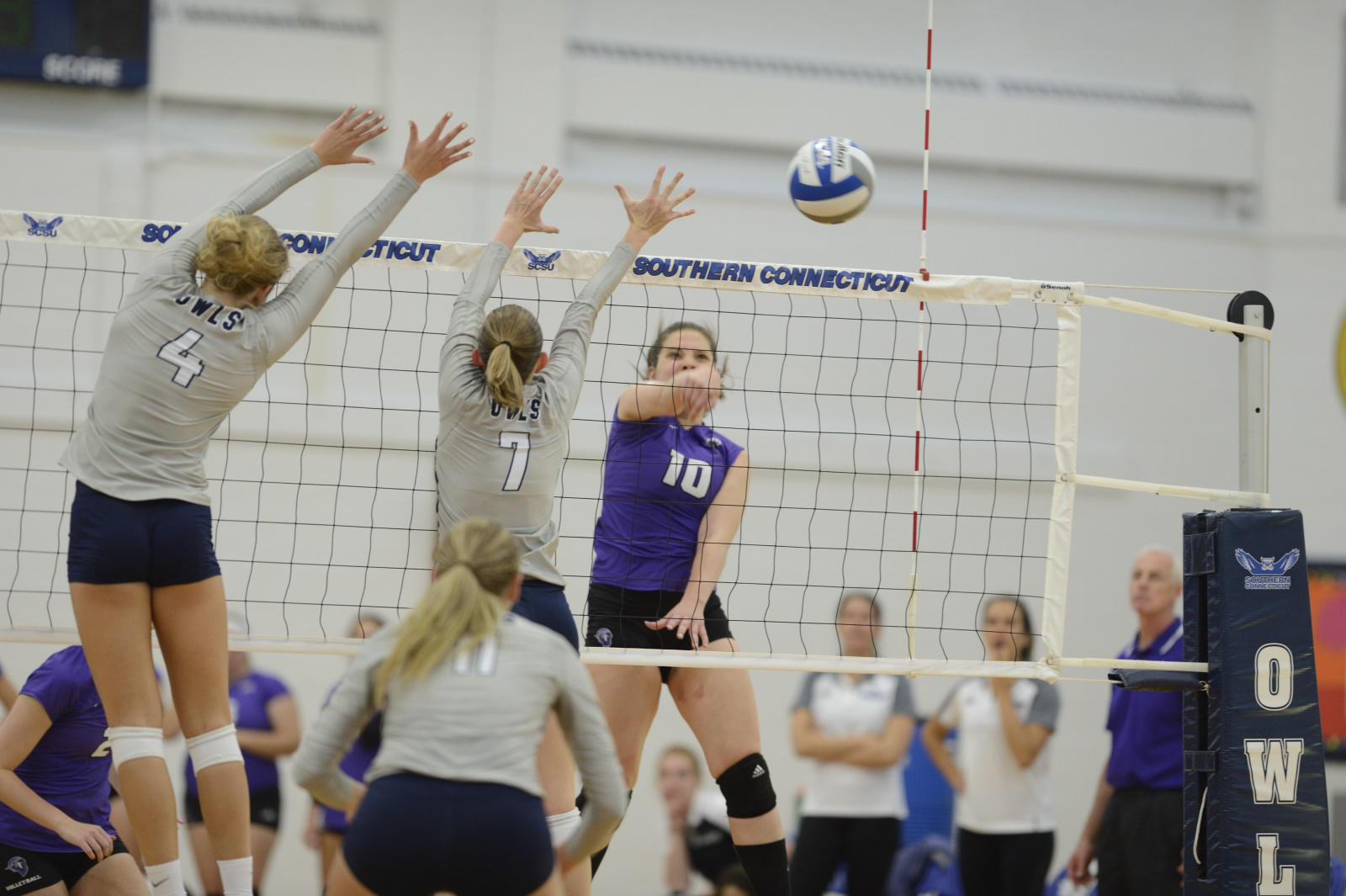 Purple Knights Even Season Volleyball Record At 8-8 And Move To 4-1 In The ECC With Sweep At Queens (N.Y.)