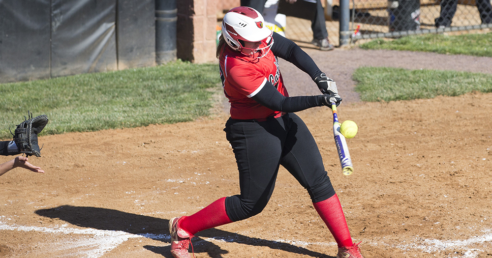 Softball Falls at Susquehanna