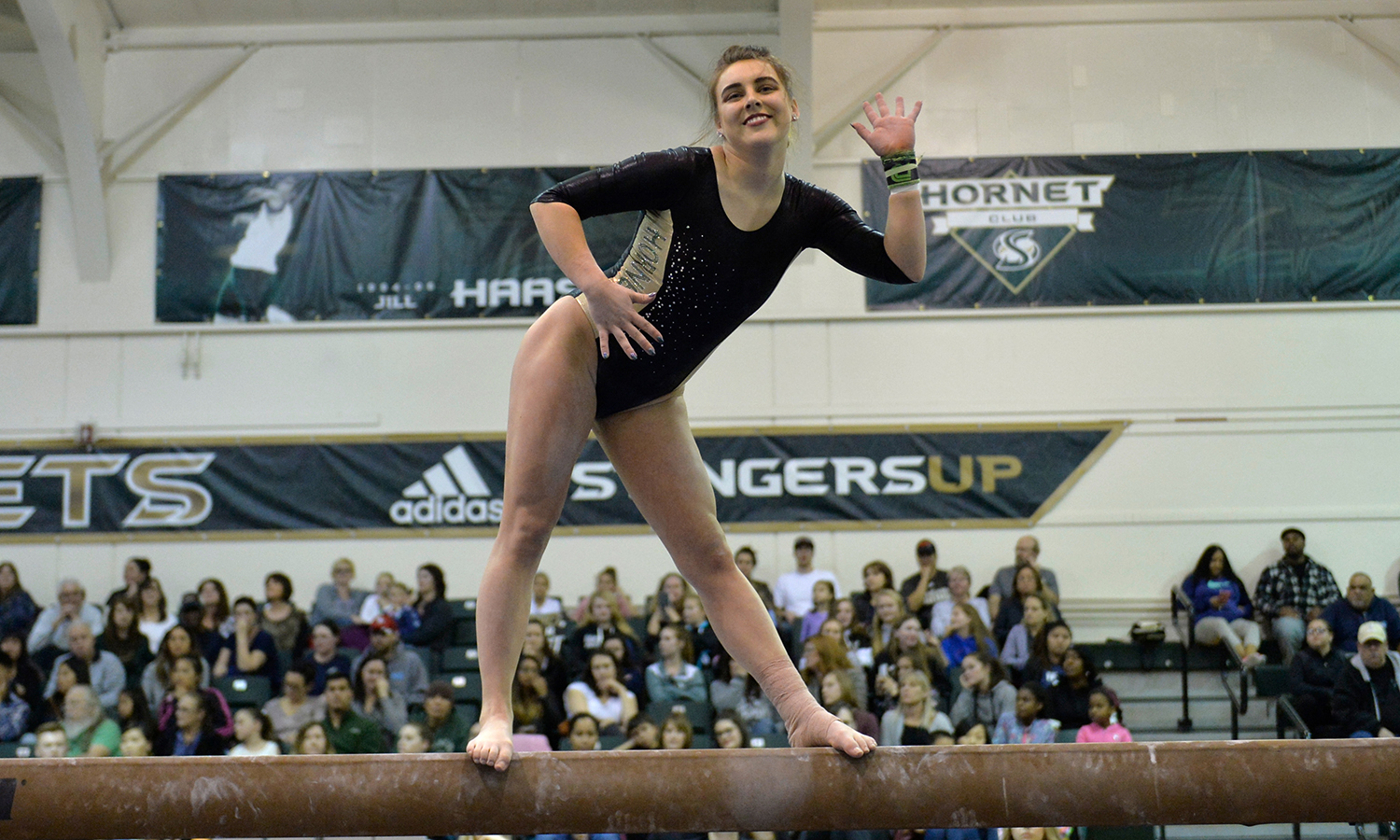 Lauren Rice, Gymnastics