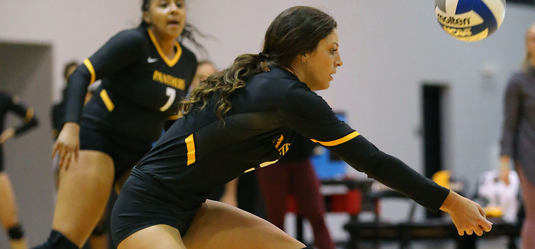 Weekend Finale Goes Against Volleyball In Setback To Hillsdale
