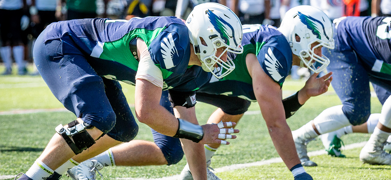 Endicott Ranked Tenth In Final Grinold Chapter New England Division III Football Poll