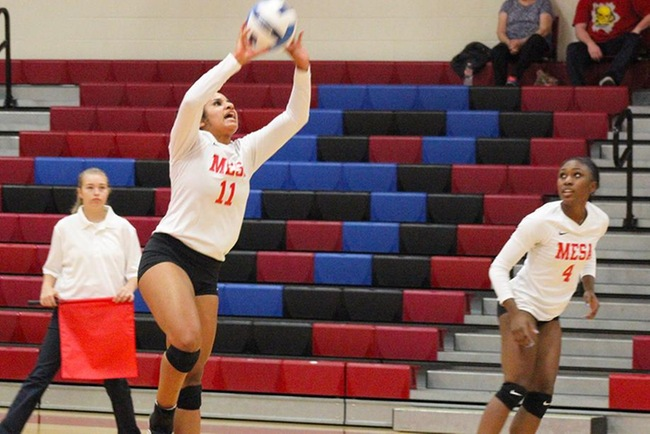 Down Two Sets, #10 Mesa Rallies to Win in Five Sets vs Chandler-Gilbert