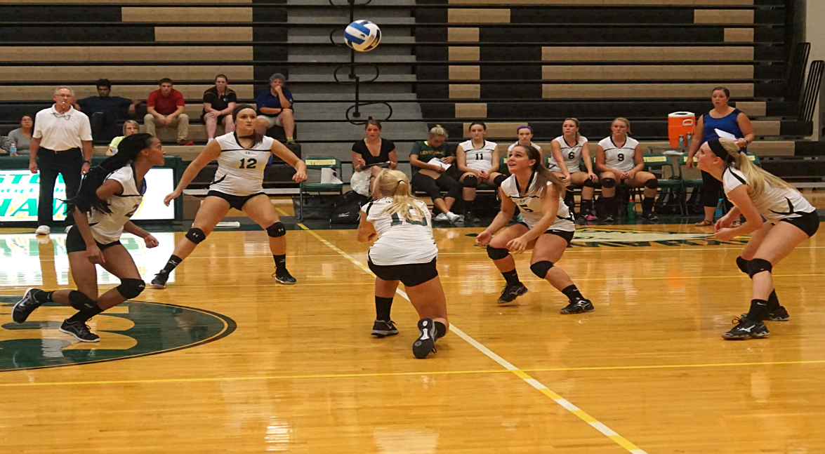 Women's Volleyball vs Niagara County CC