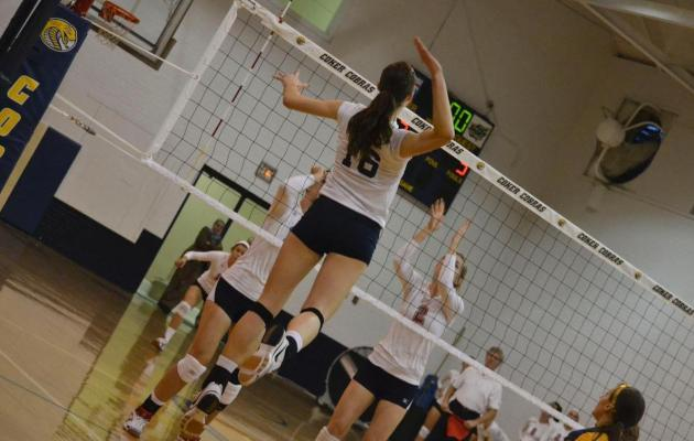 Coker Falls to North Greenville in Conference Quarterfinal Match